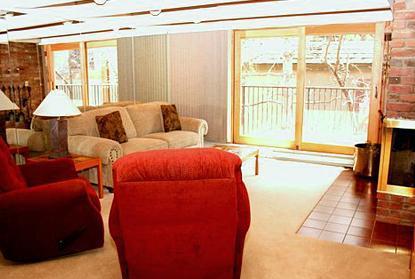 Living area - 1 Bedroom condo in downtown Aspen- Unit 14 - Aspen - rentals