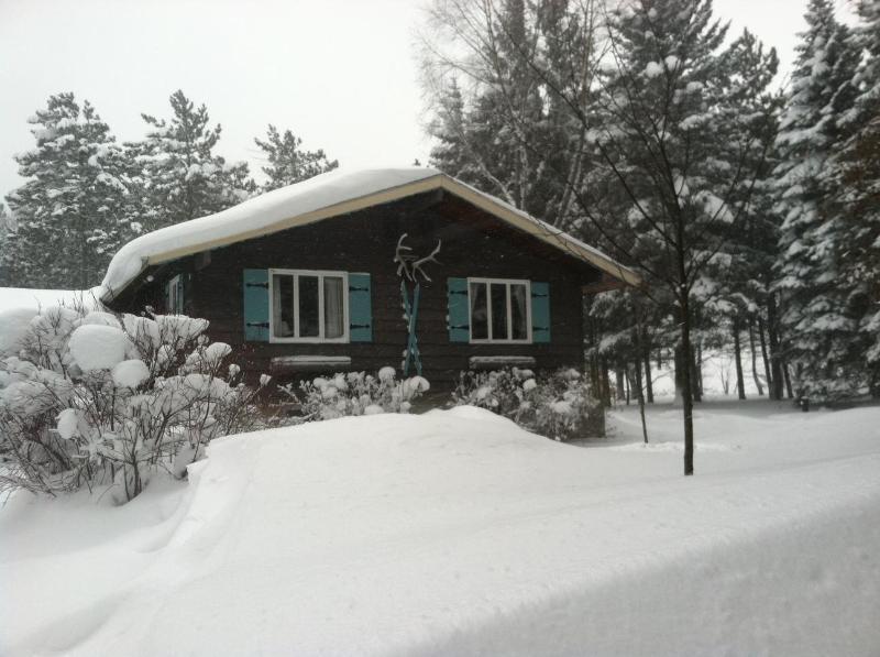 Ski/Year Round Getaway - Colden/Glenwood, NY - Image 1 - Buffalo - rentals