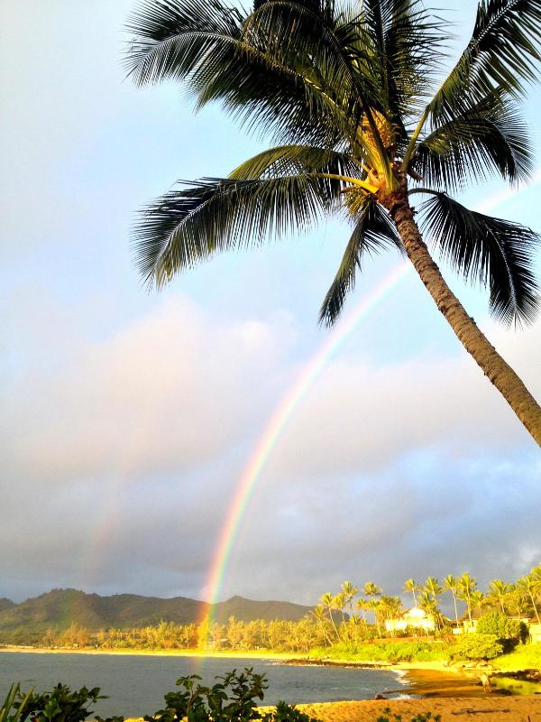 a rainbow over the bay - View says it all! Top floor(3rd) vistas of Pacific - Kapaa - rentals