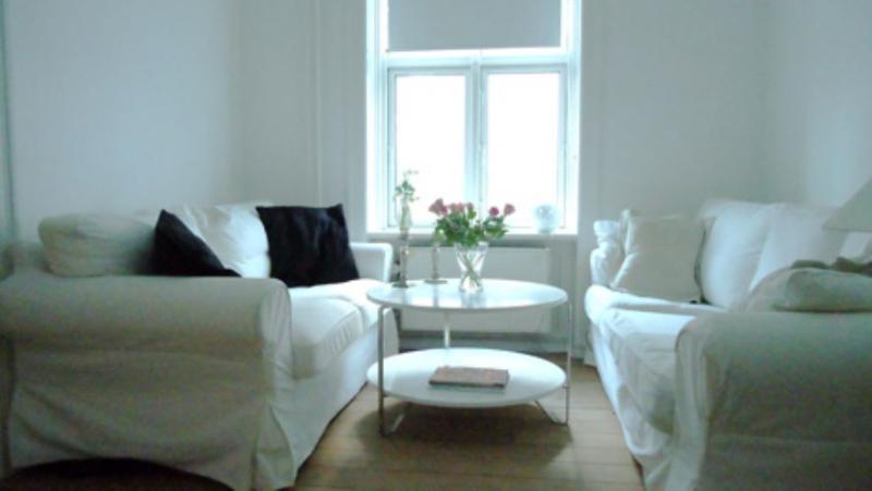 Jagtvej Apartment - Nice & cosy Copenhagen apartment - Copenhagen - rentals