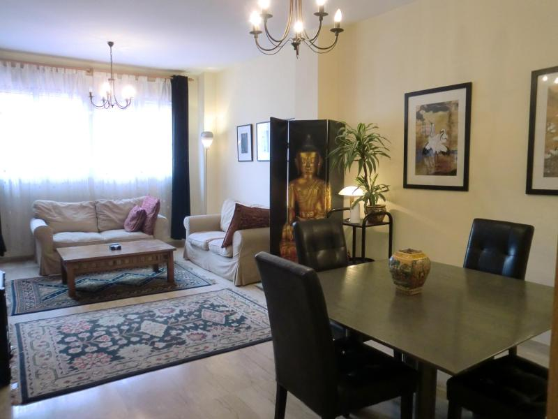 Spacious lounge/diner with heating and airconditioning - Traditional, 2 bedroom, central Valencia apartment - Valencia - rentals