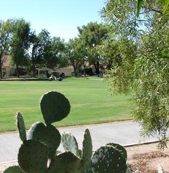 Tucson Arizona 2 Bedroom Luxury on the Golf Course - Image 1 - Tucson - rentals