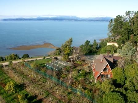 Kereru House overlooking Tasman Bay - Clifftop boutique self contained country house - Nelson - rentals