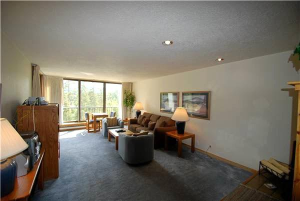 Living Room with Generous Seating - Great Value, Perfect for Small Family - Gorgeous Mountain Views  (7041) - Keystone - rentals