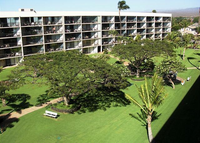 5th Floor ~ Great Ocean Views!  Remodeled Condo! - Image 1 - Kihei - rentals