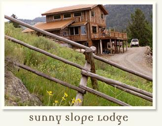 Sunny Slope Lodge - Eco-Friendly, Custom Log Home 5 Miles to Ystone - Gardiner - rentals