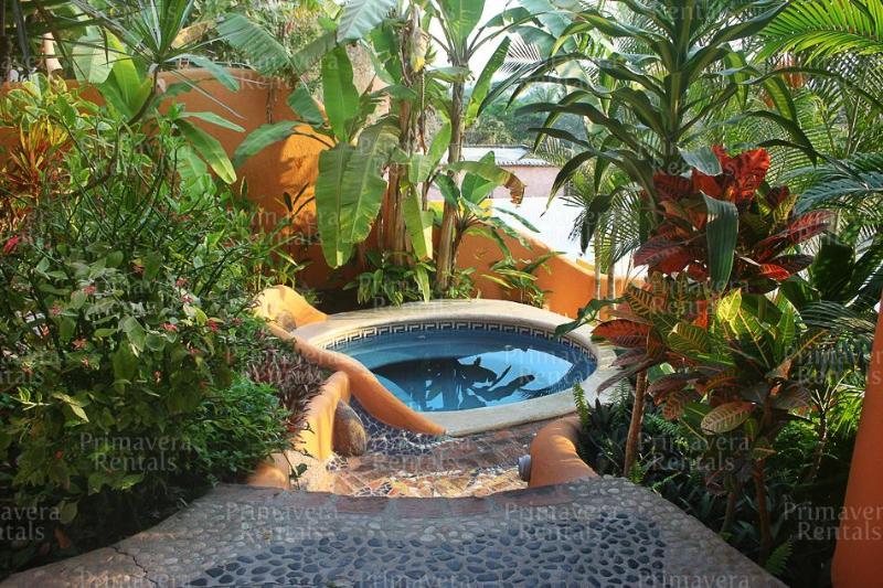 Dipping pool - Casa Curvas - Sayulita - rentals