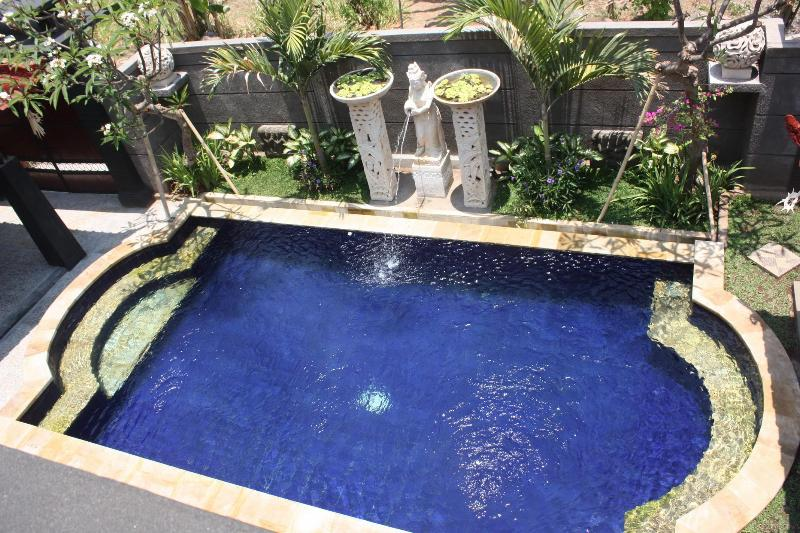 Pool - Villa Bintang Lovina - Lovina - rentals