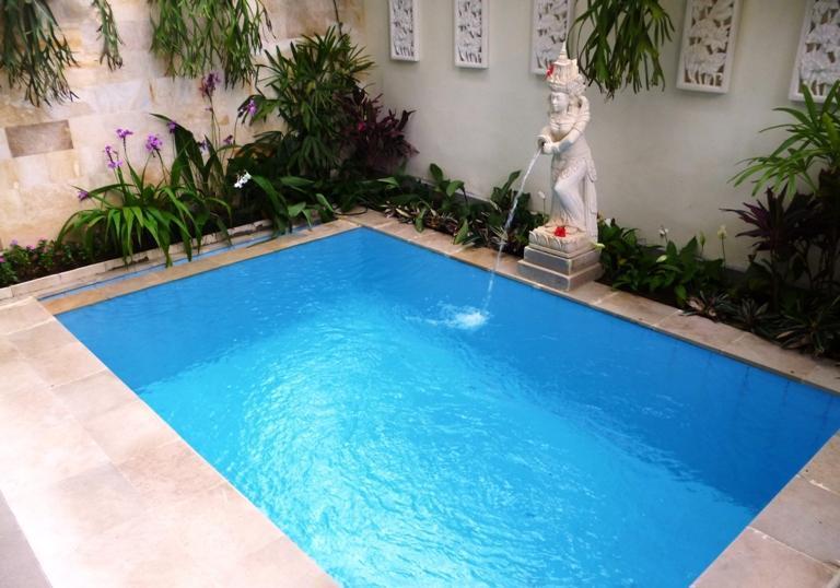 Your own private plunge pool - Just Divine, Villa on Bisma, central Ubud - Ubud - rentals