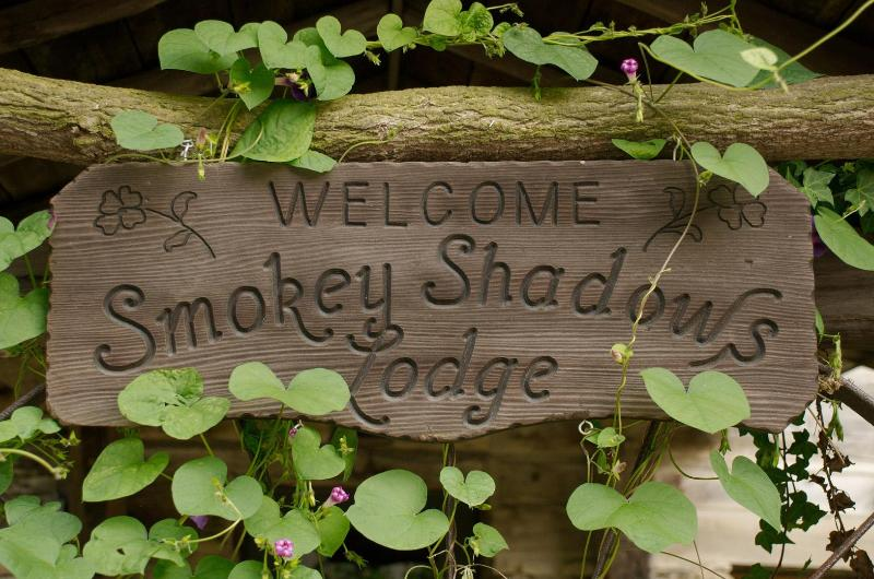 Welcome to Smokey Shadows Lodge - Smokey Shadows - Maggie Valley - rentals