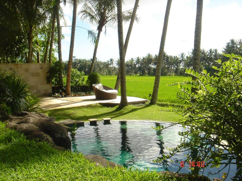 infinity pool - ubud, private villa with amazing ricefield view - Ubud - rentals