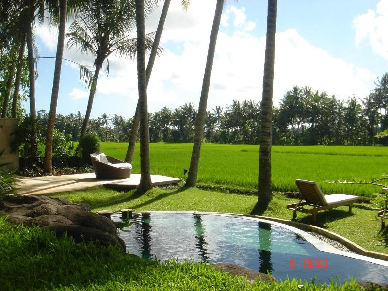 garden - ubud, private villa with amazing ricefield view - Ubud - rentals