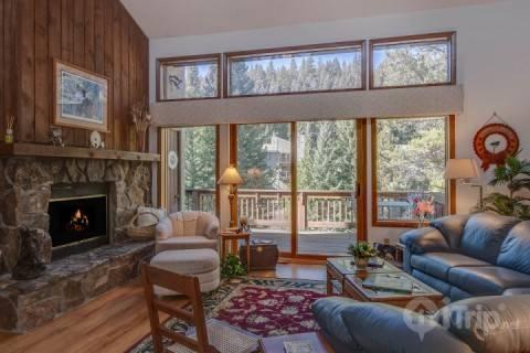 Fabulous Great Room with Wooded View - Spruce Island - Breckenridge - rentals
