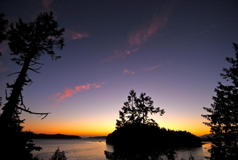 Breathtaking view from the cottage - Gold's Cottage - Tofino - rentals