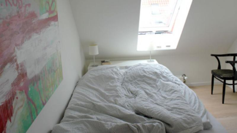 Nordlandsgade Apartment - Lovely Copenhagen penthouse apartment on Amager - Copenhagen - rentals