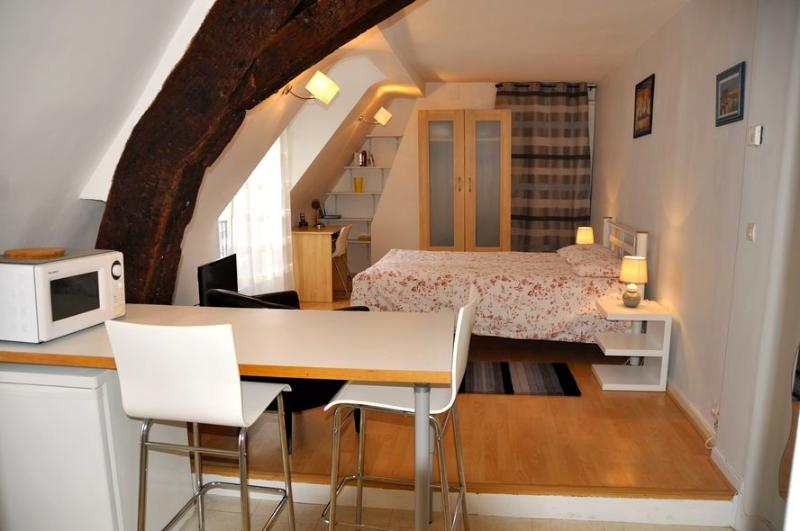 A very luminous living room with a double bed (140 cm), a desk and sufficient closet abd storage. - 301 Studio   Paris Palais Royal district - Paris - rentals
