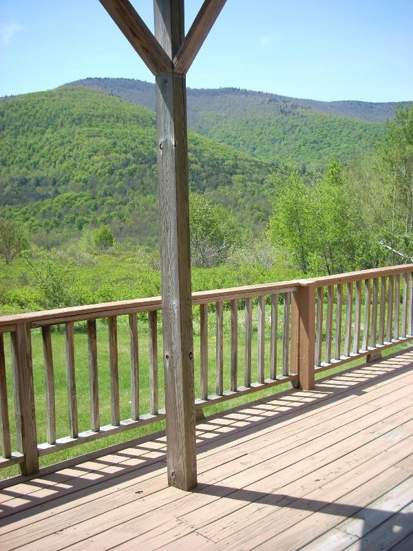 Beautiful Mountain Views - Hunter Mt~REDUCED NOW! Best Deal~5 min to Slopes! - Hunter - rentals