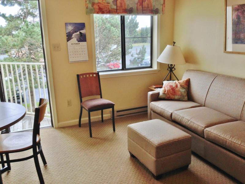 New Sleeper Sofa with upgraded mattress - ML 229 Ski In/Out. Short Walk to Village - Snowshoe - rentals