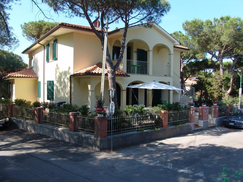 blue apartment - Image 1 - Marina di Castagneto Carducci - rentals