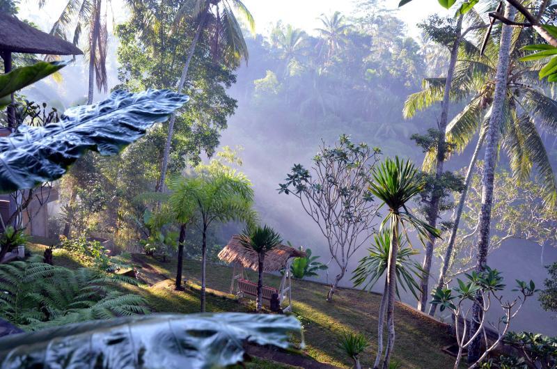 garden - Luxurious, rice-field valley view villa,Ubud,4BR - Ubud - rentals
