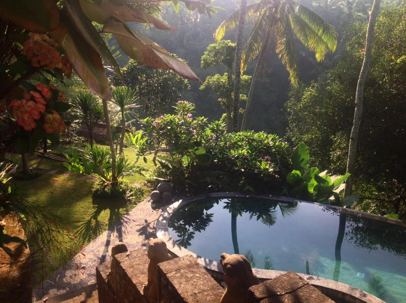 swimming pool level - Luxurious, rice-field valley view villa,Ubud,4BR - Ubud - rentals