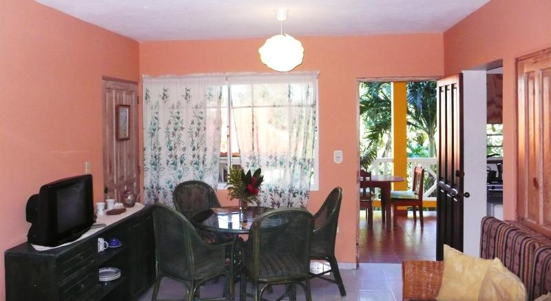 studio from the living area - Studio close to the beach and all amenities - Puerto Plata - rentals