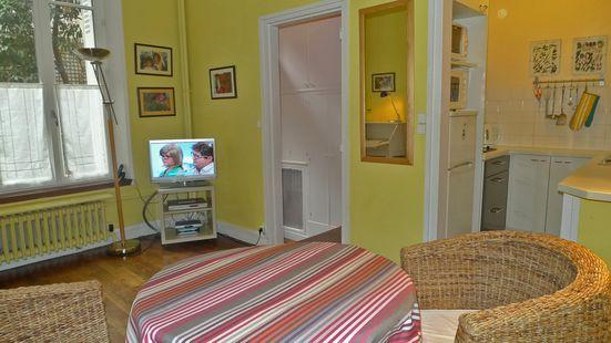 A nice studio with an entry corridor, a small kitchen and a shower room - 177 Studio   Paris Saint Germain des Pres district - Paris - rentals