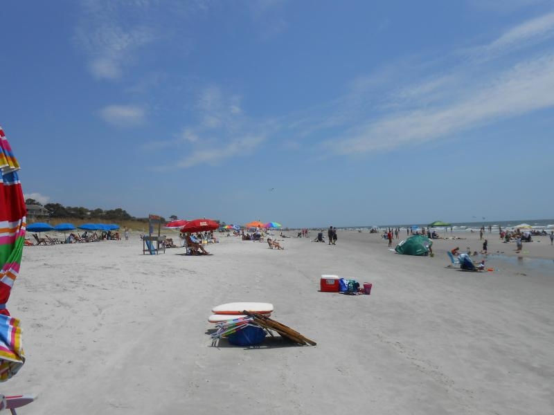Beach - Great Fall Rates and Availability - Hilton Head - rentals