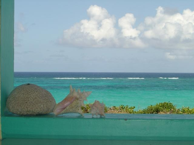 View of water from porch - Barbados Waterfront on Cliff with stairs to beach - Wellhouse - rentals
