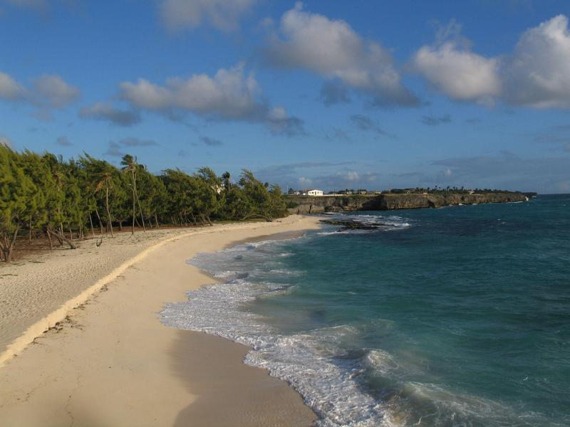 house on top of cliff looks over this beach - NEW SUMMER SPECIAL Barbados Waterfront on Cliff with stairs to beach - Wellhouse - rentals
