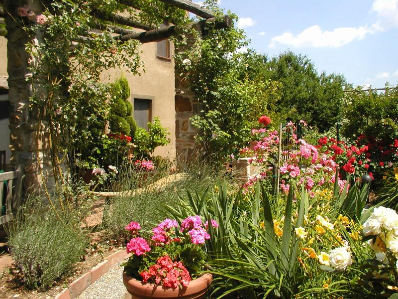 Part of Villa Rose Garden - Il Rifugio Bed and Breakfast Cottage - Lucca - rentals