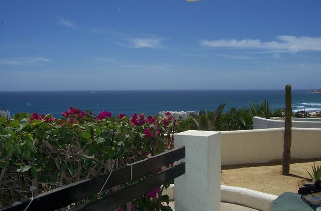 View from patio - Awesome Sunrises and Sea View - 1 bedroom - San Jose Del Cabo - rentals