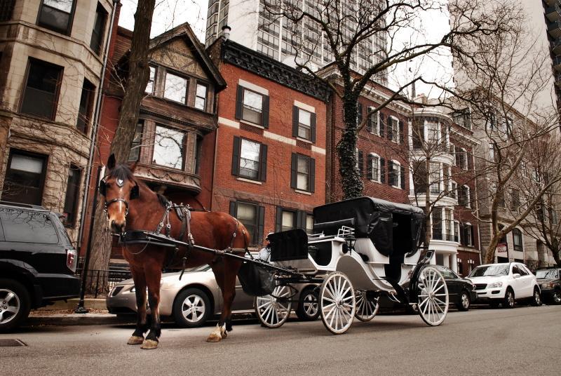 1 - Magnificent Mile Gold Coast Luxury Brownstone [2] - Chicago - rentals