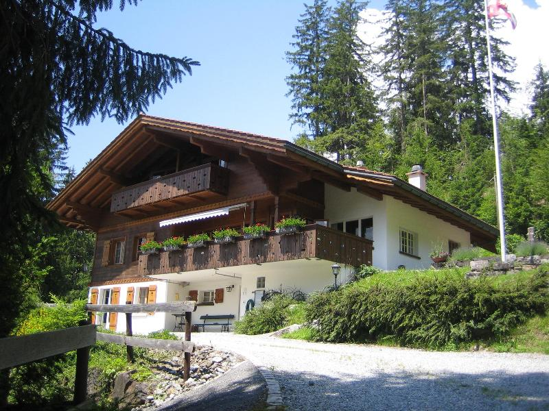 Chalet Ave in the Summer 2 - Chalet Ave, 2 flats (sleeps 9 and 4 persons) - Grindelwald - rentals