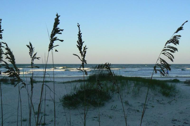 beach in front of condo - Oceanfront Gem with Expansive Views - New Smyrna Beach - rentals