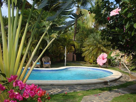 POOL - Charming Villa Carribean 50 yards from a Beach - Las Terrenas - rentals