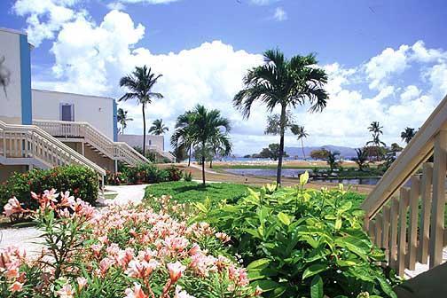 Welcome to Crystal Cove - Indulge, Unwind & Discover - Crystal Cove, USVI - Saint Thomas - rentals