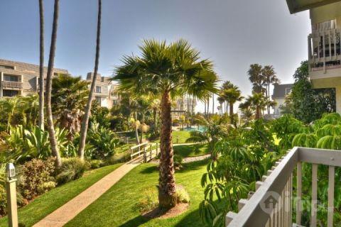 Tropical Paradise (414129) - Image 1 - Oceanside - rentals