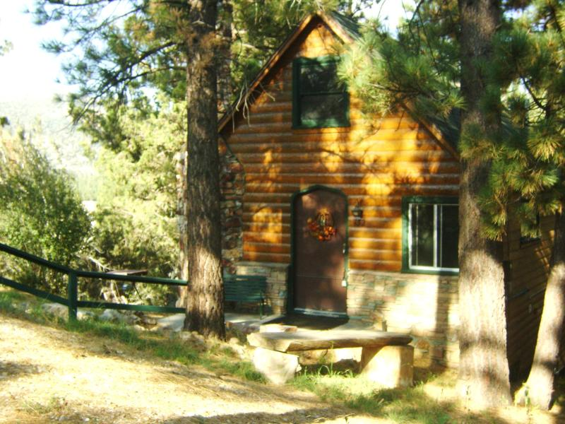 Cabin sits on a triple large lot, for added privacy. - Storybook Cabin +*HOT TUB*April-Sun-Thurs*$78/nt* - Big Bear Lake - rentals