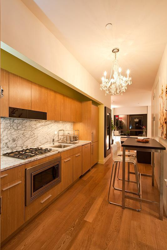 Stylish & Spacious Luxiry Studio - Image 1 - New York City - rentals