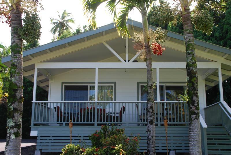 "Honomu house 1 ""Tropical Splendor"" - New Luxury Home Ocean View Hot Tub Walk Dine Shop - Hilo - rentals"