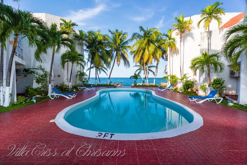 breathtaking swimming pool - Villa Criss at Chrisanns, Jamaica - Ocho Rios - rentals