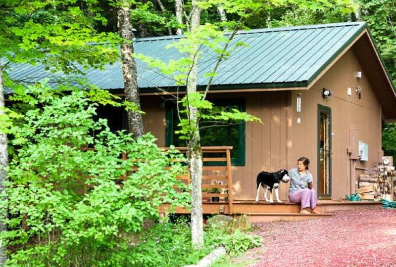 Cabin in the Summer - Hauser's Bayfield Cabin - Bayfield - rentals