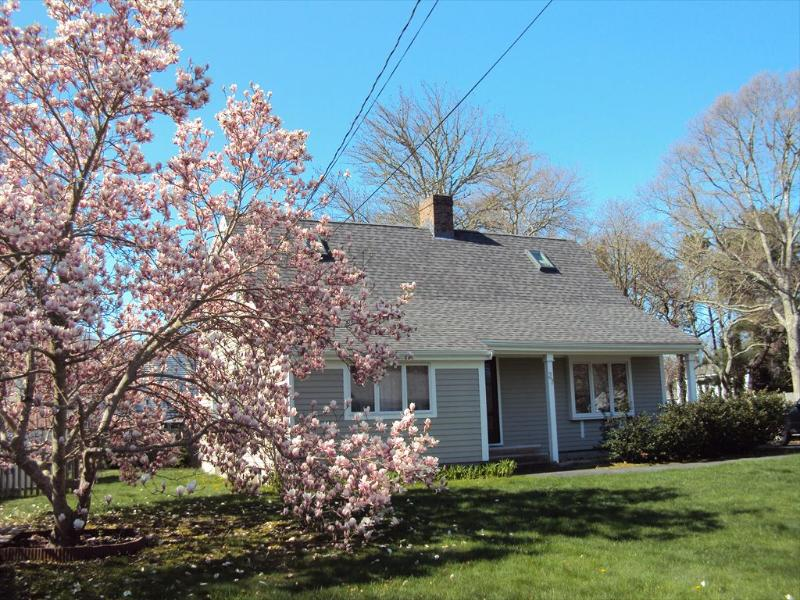 GREAT HOUSE w/BEACH PASS to CRAIGVILLE or COVELLS 109400 - Image 1 - West Hyannisport - rentals