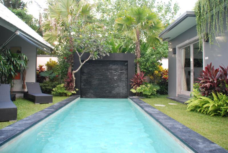 la pisine - Rent New Villa Price Special Opening - Kerobokan - rentals
