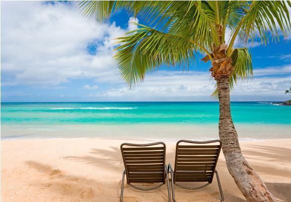 ENJOY ALL OF MAUI'S BEAUTIFUL BEACHES - LUXURY BEACH HOME POOL & VIEWS EXCELLENT LOCATION - Kihei - rentals