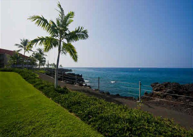 $119.00 special April 1st-13th!! Direct oceanfront condo!!! - Image 1 - Kailua-Kona - rentals