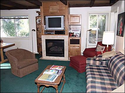 Living Room - Great Ski-in/ Ski-out value - Walk to restaurants and shops (1339) - Snowmass Village - rentals