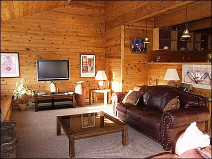 Great Room - Best Views in Snowmass - Quiet Location (1365) - Snowmass Village - rentals