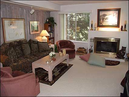 Living Room with Wood Burning Fireplace - Great Value Condo - Convenient Location (2178) - Snowmass Village - rentals
